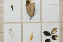Decoration / by Cuny Stelpstra