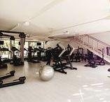 Fitness Profi / Wo kann ich eine Fitness-Ausbildung machen? Ich möchte Fitness-Kurse geben, wo kann ich eine Ausbildung machen? Welche Anbieter gibt es?