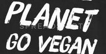 VEGANER Sprüche - T Shirt Design / Auf dieser Pinnwand findest du das eine oder andere Design zu dem Thema Veganismus.  Stehe zu deinem Veganen Lifestyle, denn Vegan zu leben ist ein Schritt in die richtige Richtung. GO VEGAN.