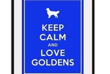 Golden / For my best furry girl Moonshine / by Paula Bell Abbott