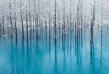 Landscape / by Svanhvit