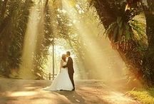 Great Wedding Photographs / Remember all the sweet moments that make up your wedding day.
