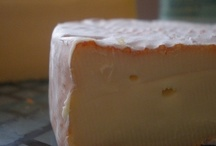 CHEESE please / all about cheese from making to eating :-) / by Betty L Frame