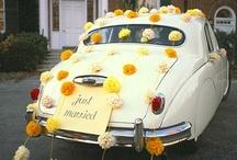 Martha Stewart Weddings / by Patricia Jones