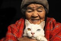 photography:  Missao and Fukumaru / Miyoko Ihara has been taking photographs of her grandmother, Misao and her beloved cat Fukumaru since their relationship began in 2003.  / by Cat Museum