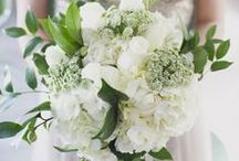 Winter White Bridal Bouquets / Inspirational bridal bouquets with hues of white and ivory. Classic. Elegant. Timeless #bermudabride #bermuda #love  #flowers #wedding #bouquets #white