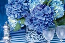 Sky Blue Arrangements / The one color of the world thats the most natural. #blue #sky #ocean #bermuda #flowers