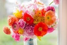 Summer is splashing.... / For those summer months, you can still enjoy the pleasures of having flowers. #bermuda #love #petalsbermuda #flowers #arrangements #bouquets #summer