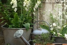 Porches, Backyard and Garden Ideas / by Gaye Marie