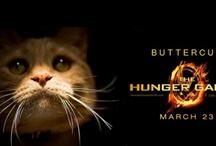 Hunger games / by Aubrey Mitchell