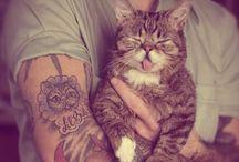 Kittens / by Hayden Elise
