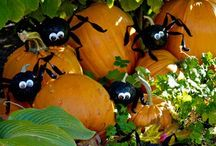 Halloween: Spooky & Sweet / Pumpkins, Spiders, Spooky Treats, Home Decorating, Costumes and More! / by Kelly Yale