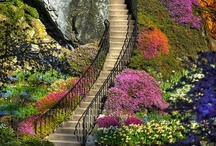 Stairs / by Miran Northcott