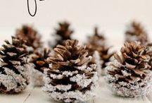 Winter Decor / Inspiring ideas to decorating your home during winter.