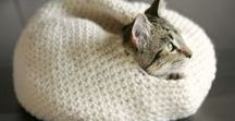 MAKE | knit