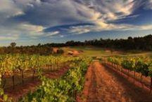 Cypress Lakes, Australia / Hunter Valley  N.S.W. Australia. Resort Golf Course. Opened in 1992. Hosted Australian PGA Tournaments.