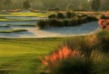 Old Memorial Golf Club / Tampa, Florida. Private Golf Course. Opened in 1997. Redesigned in 2015. Hosted the Gary Koch Collegiate Invitational; US Open Sectional Qualifiers; PGA Section Championships