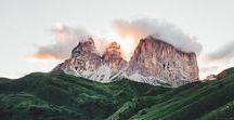 FLORA | wilderness