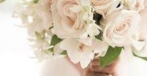 Floral Arrangements, Bouquets...