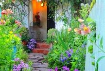 Gardens / public / by Alana