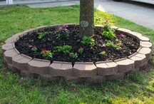 Landscaping Ideas / by Donna H