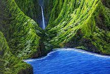 Hawaii / by Trish Scholz