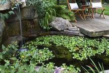 Garden Ponds / On my to do list.  The sound of water......peaceful. / by Bobbie Hopper