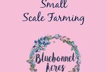 Small Scale Farming / Small Scale Farming