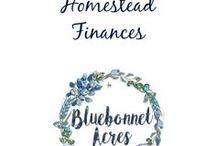 Homestead Finances / Homestead Finances