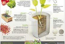 Gardening, horticultura. / Trucos, habilidades y otros recursos de jardinería. / by Miguel Navaza