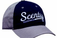 SCENTSY BUSINESS PICTURES / Warmers/Bars/Buddies/Body Products/Laundry Care/Fragrances http://itmakesscentsdebs.scentsy.com.au