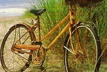 I ride my bicycle