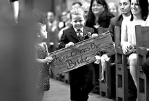 N&T's Wedding ideas / Ideas for our wonderful wedding.