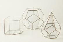 Glass + Jars