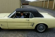 Mustang, Ponys / My favorite cars, I have had three so far, 03 gt, 08 gt, and my current car. 66 convertable  / by Dan Simonette