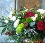 Winter Holiday Florals / Winter florals from Alchemy Farm Studio ~ Locally grown flowers