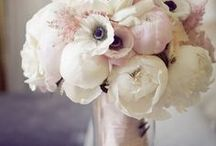 Blooms / flowers, peonies, hydrangeas, bouquets, flower arrangements