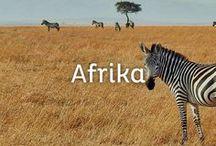Afrika Reisen / Faszinierende Landschaften, atemberaubende Tierwelt, reiche Kulturschätze und sehr gastfreundliche Menschen. All das und noch viel mehr macht die Vielfalt Afrikas aus. Von 1.000 und 1 Nacht in Marokko, über eine Safari in Kenia oder Tansania bis hin zum Badeurlaub in Südafrika haben wir allerlei Afrika-Reisen-Inspirationen für euch.