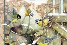 BIRDies / by Lou H