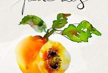 just peachy!! / peachy colors / by Lou H