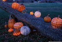 Holidays-Halloween & Fall / by Renee Jones