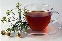 Medicinal Uses of Plants / My favorite medicinal plants and how to use them.