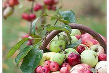 {BABYSHOWER} - Apple of My Eye / Possible themes: Apple of my eye / make a wish / hello sunshine / Newspaper