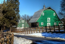 Barns / I absolutely LOVE any and all barns everywhere! / by Peggy Dunaway