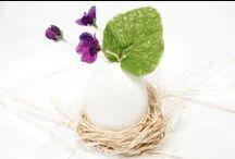 Easter, Pasqua / by Babington's Tea Rooms