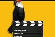 Cine y Medio Ambiente / Películas en el punto de interés de la Mediateca