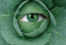 It's not easy being GREEN. / by Karen Evans-Hall