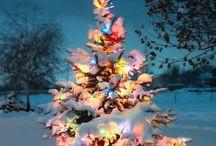 Tis the Season / by Leslie Guthrie