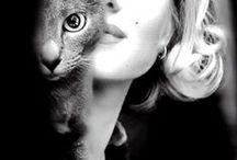 Día Mundial de los animales: Actores con sus gatos / El 4 de octubre se celebra el día mundial de los animales. La Mediateca ha seleccionado una serie de fotos de algunos de nuestros actores más conocidos que han posado con su mascota felina