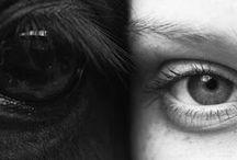 A ja gillar hästar